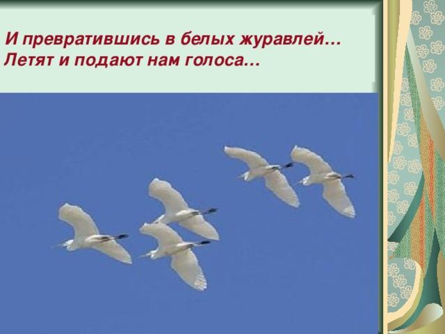 И превратившись в белых журавлей…  Летят и подают нам голоса…