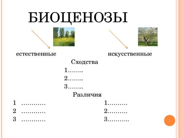 Доклад естественные и искусственные биоценозы 4309