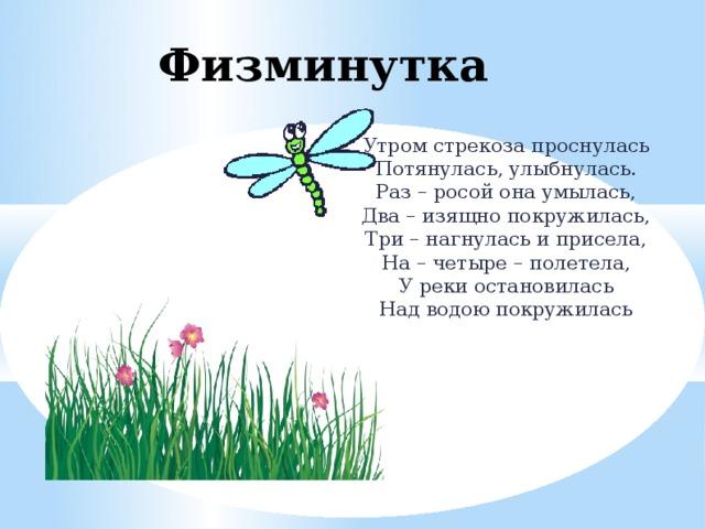 тушенку стихи про стрекозу центру собираются