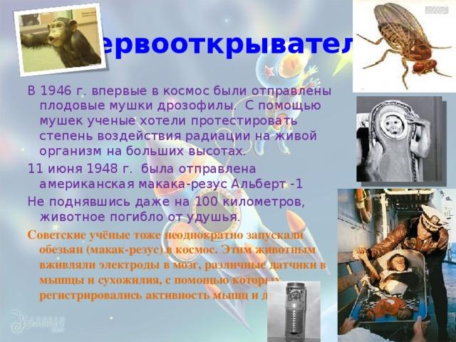 первооткрыватели В 1946 г. впервые в космос были отправлены плодовые мушки дрозофилы. С помощью мушек ученые хотели протестировать степень воздействия радиации на живой организм на больших высотах. 11 июня 1948 г. была отправлена американская макака-резус Альберт -1 Не поднявшись даже на 100 километров, животное погибло от удушья. Советские учёные тоже неоднократно запускали обезьян (макак-резус) в космос. Этим животным вживляли электроды в мозг, различные датчики в мышцы и сухожилия, с помощью которых регистрировались активность мышц и движения.