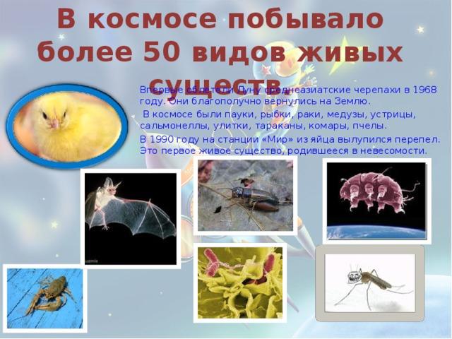 В космосе побывало более 50 видов живых существ. Впервые облетели Луну среднеазиатские черепахи в 1968 году. Они благополучно вернулись на Землю.  В космосе были пауки, рыбки, раки, медузы, устрицы, сальмонеллы, улитки, тараканы, комары, пчелы. В 1990 году на станции «Мир» из яйца вылупился перепел. Это первое живое существо, родившееся в невесомости.