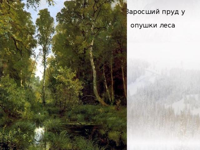Заросший пруд у опушки леса