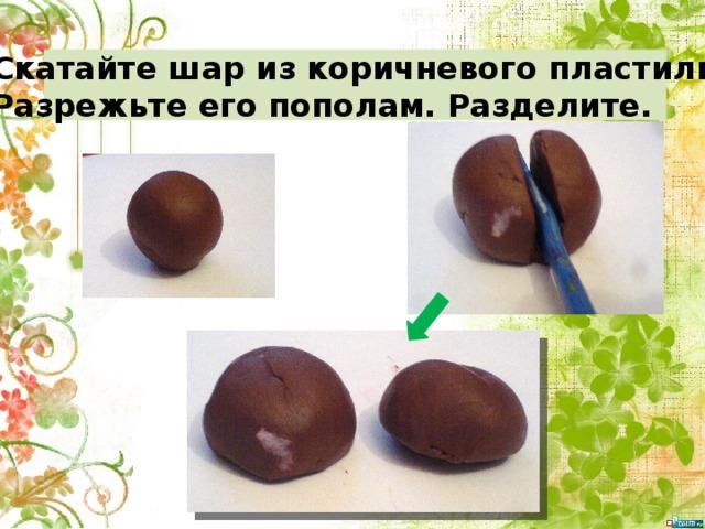 Скатайте шар из коричневого пластилина. Разрежьте его пополам. Разделите.