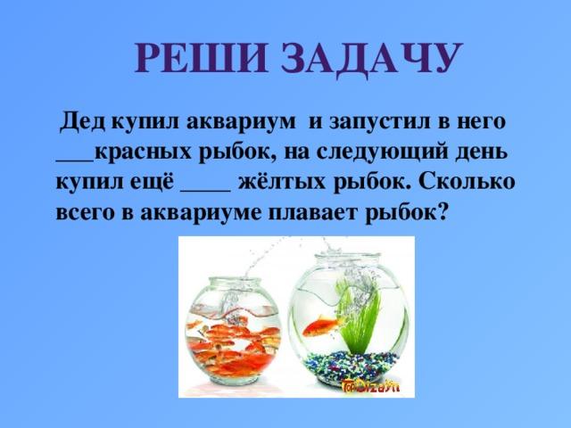 РЕШИ ЗАДАЧУ  Дед купил аквариум и запустил в него ___красных рыбок, на следующий день купил ещё ____ жёлтых рыбок. Сколько всего в аквариуме плавает рыбок?