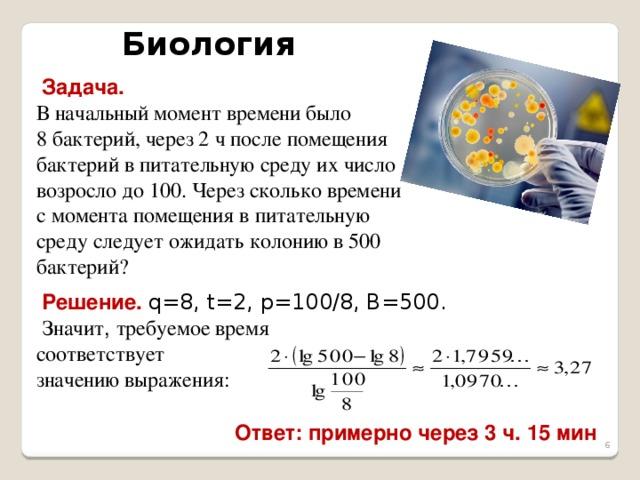 задачи на фотосинтез с решением тем как