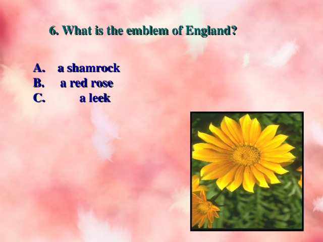 6. What is the emblem of England? A. a shamrock B. a red rose C. a leek