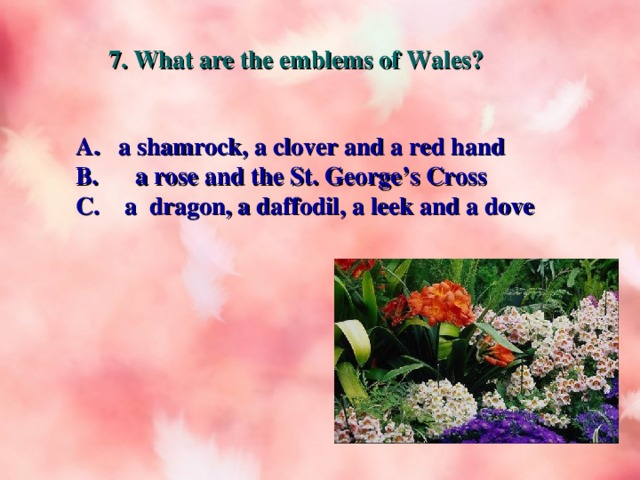 7. What are the emblems of Wales?  a shamrock, a clover and a red hand B. a rose and the St. George's Cross C. a dragon, a daffodil, a leek and a dove