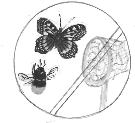 знак не ловить насекомых картинка отсчитывающая шестой
