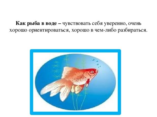 Как рыба в воде – чувствовать себя уверенно, очень хорошо ориентироваться, хорошо в чем-либо разбираться.