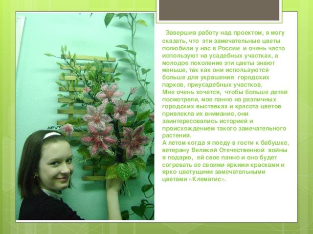 Завершив работу над проектом, я могу сказать, что эти замечательные цветы полюбили у нас в России и очень часто используют на усадебных участках, а молодое поколение эти цветы знают меньше, так как они используются больше для украшения городских парков, приусадебных участков. Мне очень хочется, чтобы больше детей посмотрели, мое панно на различных городских выставках и красота цветов привлекла их внимание, они заинтересовались историей и происхождением такого замечательного растения. А летом когда я поеду в гости к бабушке, ветерану Великой Отечественной войны я подарю, ей свое панно и оно будет согревать ее своими яркими красками и ярко цветущими замечательными цветами «Клематис».