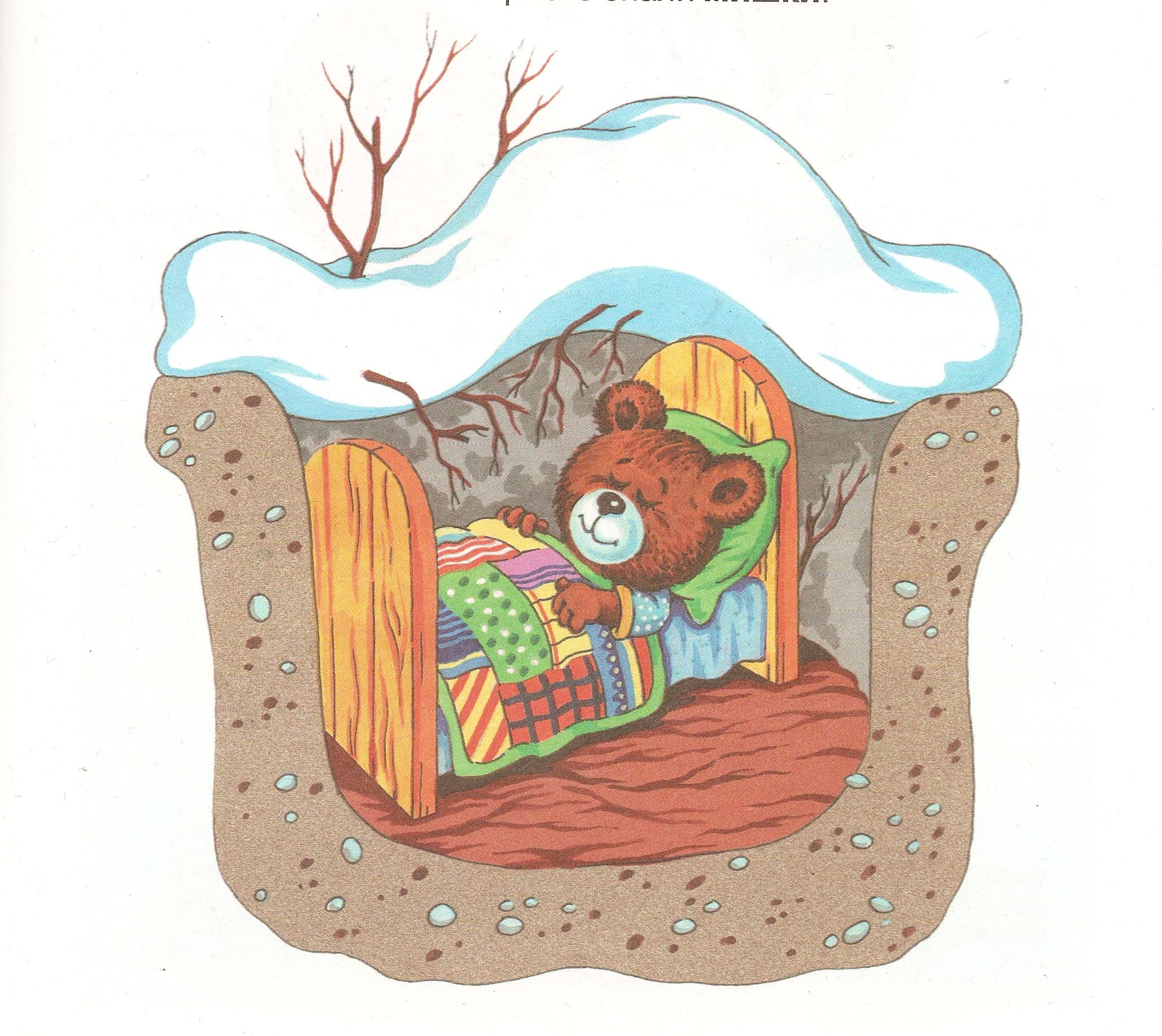 плоды можно открытки три медведя спят момент для тех