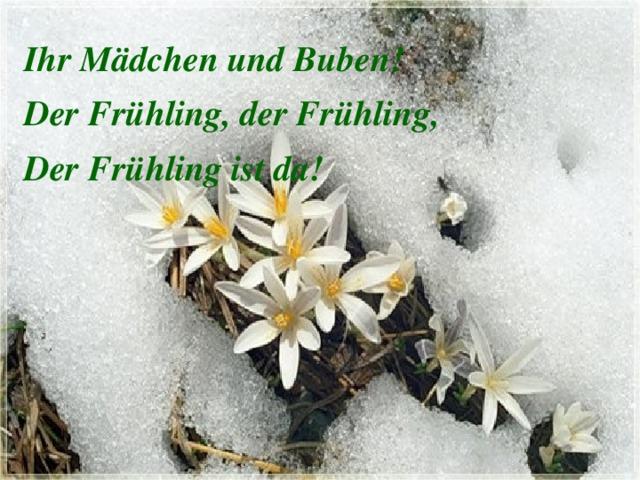 Открытки немецкий язык о весне, смешная лаборант картинка