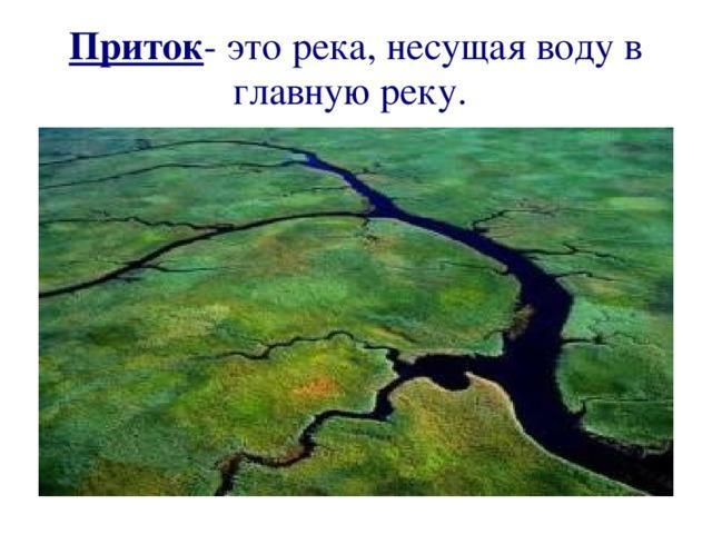 Приток - это река, несущая воду в главную реку.