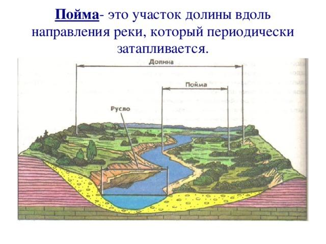 Пойма - это участок долины вдоль направления реки, который периодически затапливается.