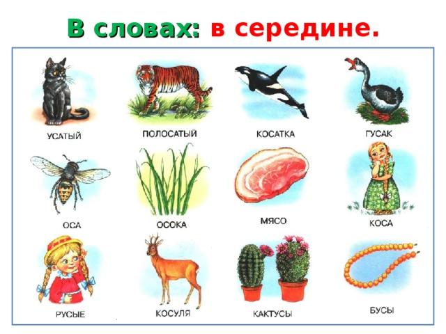 Слова на с в конце слова для детей в картинках