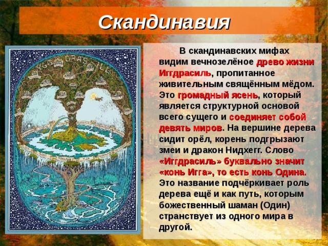 Скандинавия   В скандинавских мифах видим вечнозелёное древо жизни Иггдрасиль , пропитанное живительным свящённым мёдом. Это громадный ясень , который является структурной основой всего сущего и соединяет собой девять миров . На вершине дерева сидит орёл, корень подгрызают змеи и дракон Нидхегг. Слово «Иггдрасиль» буквально значит «конь Игга», то есть конь Одина. Это название подчёркивает роль дерева ещё и как путь, которым божественный шаман (Один) странствует из одного мира в другой.