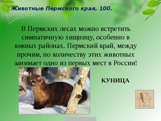 личной животные и растения пермского края с картинками нестареющая классика многие