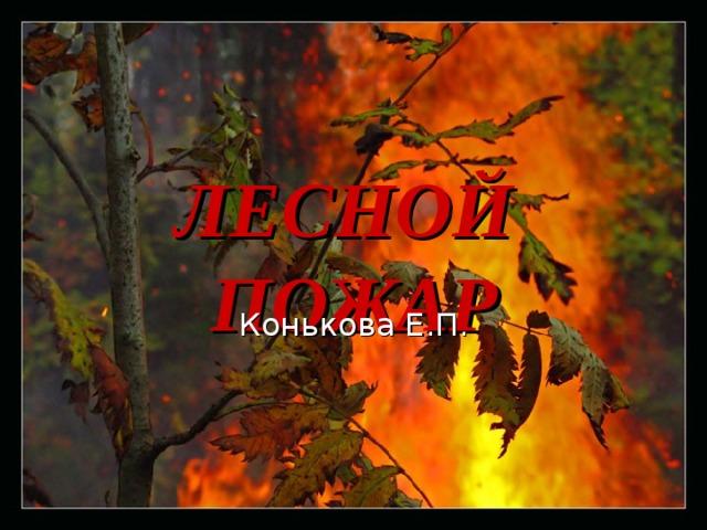 ЛЕСНОЙ  ПОЖАР Конькова Е.П.