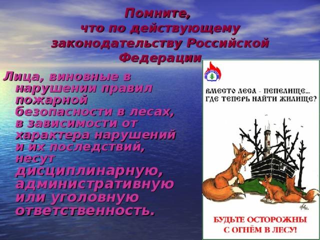Помните,  что по действующему законодательству Российской Федерации Лица, виновные в нарушении правил пожарной безопасности в лесах, в зависимости от характера нарушений и их последствий, несут дисциплинарную, административную или уголовную ответственность.