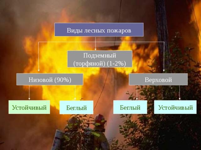 Виды лесных пожаров Подземный (торфяной) (1-2%) Верховой Низовой (90%)  Устойчивый  Беглый Устойчивый Беглый
