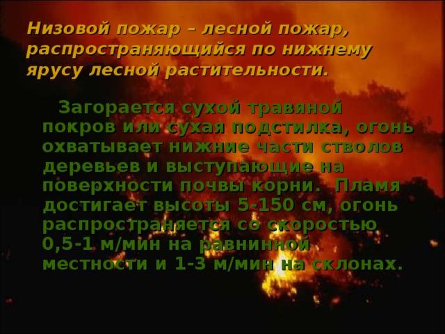 Низовой пожар – лесной пожар, распространяющийся по нижнему ярусу лесной растительности.    Загорается сухой травяной покров или сухая подстилка, огонь охватывает нижние части стволов деревьев и выступающие на поверхности почвы корни. Пламя достигает высоты 5-150 см, огонь распространяется со скоростью 0,5-1 м/мин на равнинной местности и 1-3 м/мин на склонах.