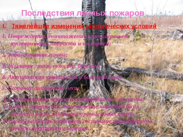 Последствия лесных пожаров Тяжелейшие изменения экологических условий 1. Повреждение, уничтожение огнем деревьев, кустарников, подроста и их корней; 2. Заболачивание почвы; 3. Усыхание лесов, сухость, бурелом; 4. Активизация вредителей и болезней леса; 5. Сгорание самопосева леса;  6. Уничтожение верхнего плодородного слоя почвы;  7. Гибель животных, исчезновение кормовой базы пушного зверя, гнездовий промысловых птиц.  8. Задымленность ухудшает состояние атмосферного воздуха продуктами горения…
