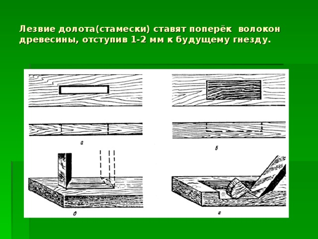 Лезвие долота(стамески) ставят поперёк волокон древесины, отступив 1-2 мм к будущему гнезду.