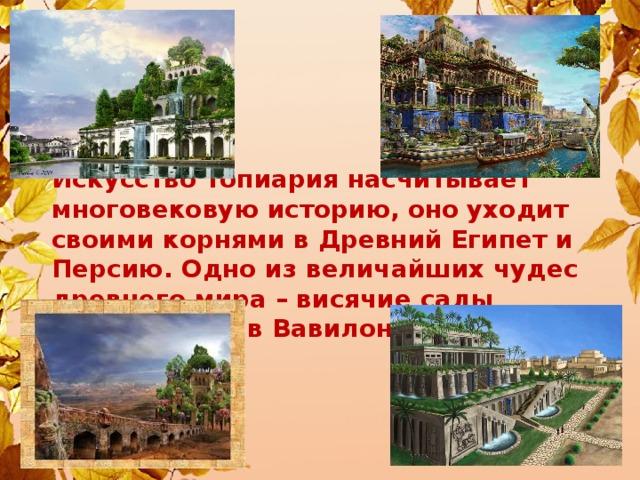 Искусство топиария насчитывает многовековую историю, оно уходит своими корнями в Древний Египет и Персию. Одно из величайших чудес древнего мира – висячие сады Семирамиды в Вавилоне.