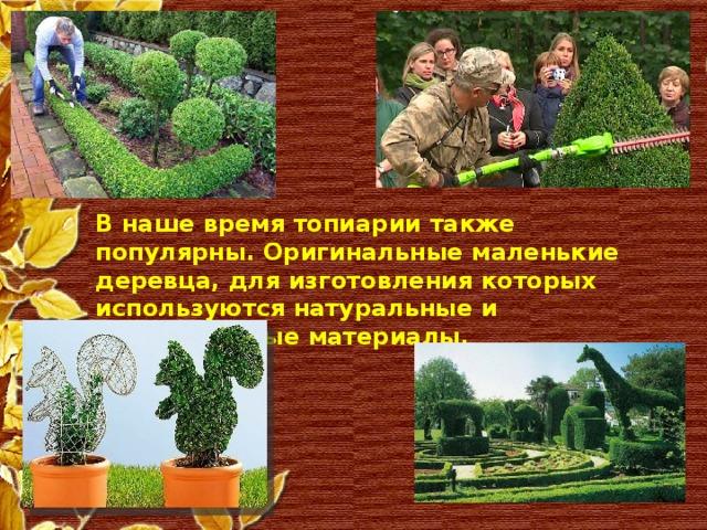 В наше время топиарии также популярны. Оригинальные маленькие деревца, для изготовления которых используются натуральные и искусственные материалы.