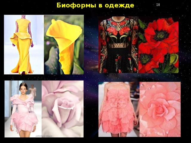 Биоформы в одежде