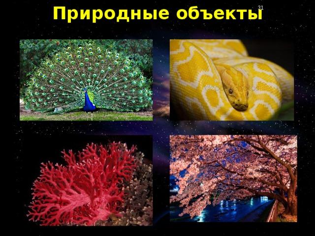 Природные объекты