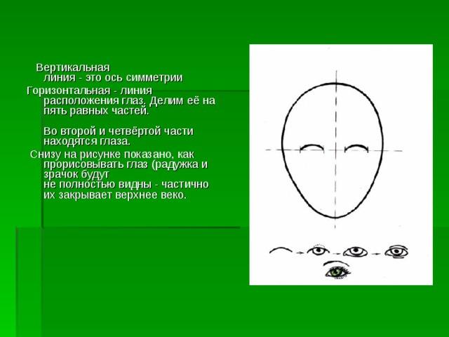 Вертикальная  линия - это ось симметрии Горизонтальная - линия расположения глаз. Делим её на пять равных частей.   Во второй и четвёртой части находятся глаза.  Снизу на рисунке показано, как прорисовывать глаз (радужка и зрачок будут  не полностью видны - частично их закрывает верхнее веко.