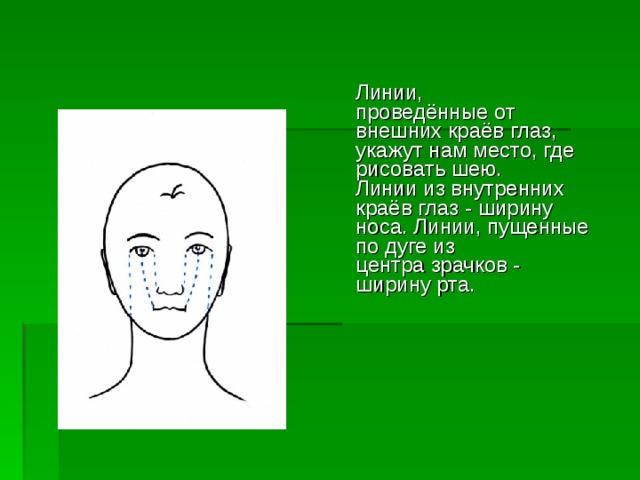 Линии,  проведённые от внешних краёв глаз, укажут нам место, где рисовать шею.  Линии из внутренних краёв глаз - ширину носа. Линии, пущенные по дуге из  центра зрачков - ширину рта.