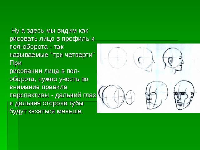 Ну а здесь мы видим как рисовать лицо в профиль и пол-оборота - так называемые