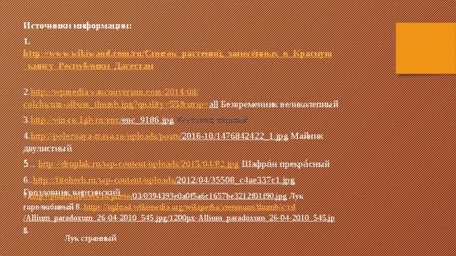Источники информации: 1. http://www.wikiwand.com/ru/Список_растений,_занесённых_в_Красную_книгу_Республики_Дагестан  2. http://wpmedia.vancouversun.com/2014/08/ colchicum-album_thumb.jpg?quality =55&strip= all Безвременник великолепный 3. http://vin-ru.1gb.ru/ enc /enc_9186.jpg  Костенец чёрный 4. http://poleznaya-trava.ru/ uploads / posts /2016-10/1476842422_1.jpg Майник двулистный. 5.. http://droplak.ru/wp-content/uploads/2015/04/82.jpg Шафра́н прекра́сный 6.. http://fitoherb.ru/ wp-content / uploads /2012/04/35508_c4ae337c1.jpg  Гроздовник виргинский 7. http ://photosflowery.ru/ photo /03/0394393e0a0f5a6c1657be3212f01f90.jpg Лук горолюбивый 8.. https://upload.wikimedia.org/ wikipedia / commons / thumb /c/ cd /Allium_paradoxum_26-04-2010_545.jpg/1200px-Allium_paradoxum_26-04-2010_545.jpg Лук странный