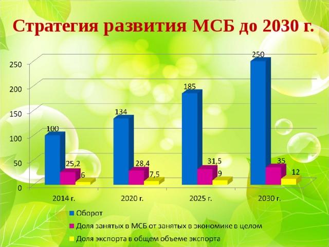 Стратегия развития МСБ до 2030 г.