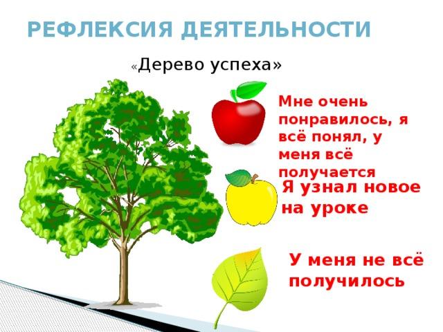 внимание дерево успехов успеха на уроке картинки помидоры вывели
