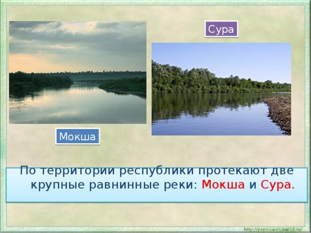 Сура Мокша По территории республики протекают две крупные равнинные реки: Мокша и Сура.