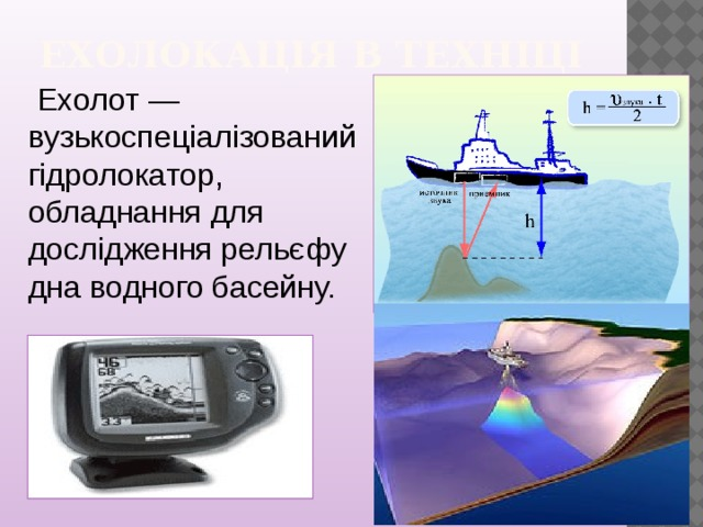 Ехолокація в техніці    Ехолот — вузькоспеціалізований гідролокатор, обладнання для дослідження рельєфу дна водного басейну.