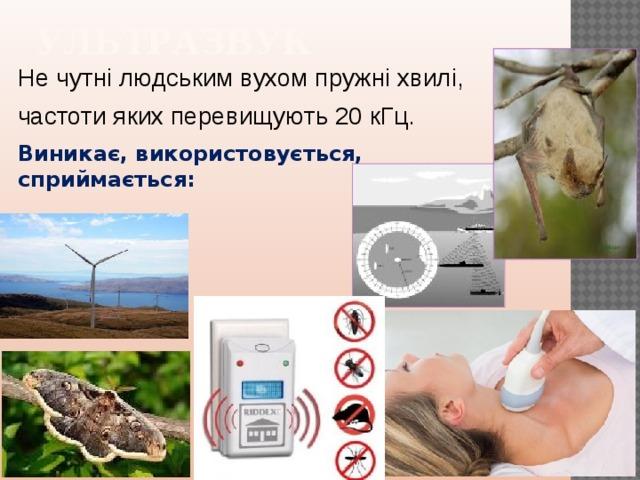 УЛЬТРАЗВУК Не чутні людським вухом пружні хвилі, частоти яких перевищують 20 кГц.  Виникає, використовується, сприймається: