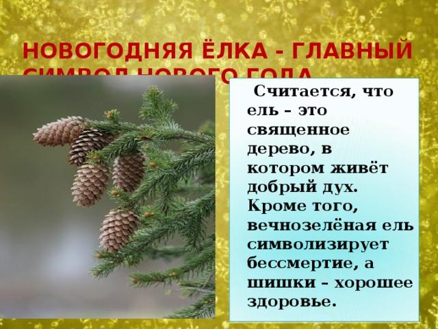 Новогодняя ёлка - главный символ Нового года.  Считается, что ель – это священное дерево, в котором живёт добрый дух. Кроме того, вечнозелёная ель символизирует бессмертие, а шишки – хорошее здоровье.