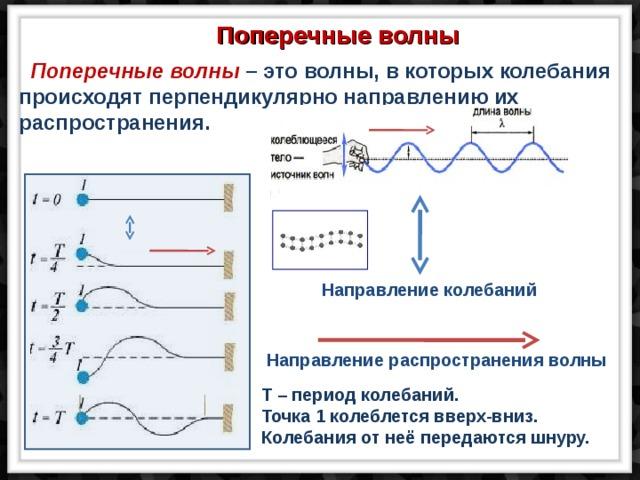 Поперечные волны  Поперечные волны – это волны, в которых колебания происходят перпендикулярно направлению их распространения. Направление колебаний Направление распространения волны T – период колебаний. Точка 1 колеблется вверх-вниз. Колебания от неё передаются шнуру.