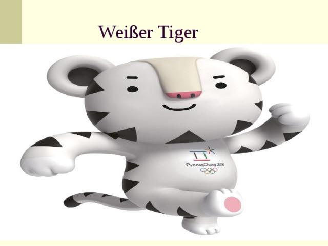 Wei ßer Tiger