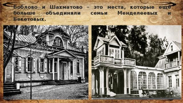 Боблово и Шахматово – это места, которые ещё больше объединяли семьи Менделеевых и Бекетовых.