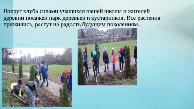 Вокруг клуба силами учащихся нашей школы и жителей деревни посажен парк деревьев и кустарников. Все растения прижились, растут на радость будущим поколениям.
