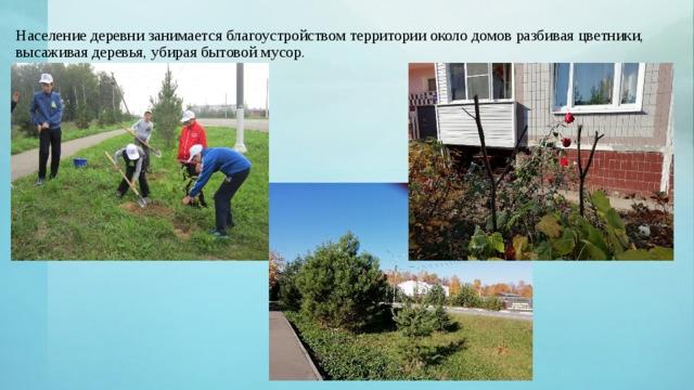 Население деревни занимается благоустройством территории около домов разбивая цветники, высаживая деревья, убирая бытовой мусор.