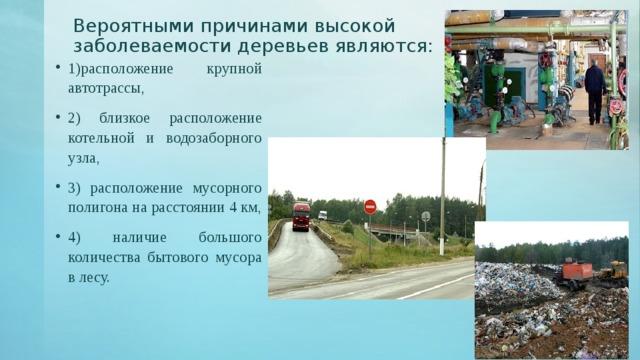 Вероятными причинами высокой заболеваемости деревьев являются:   1)расположение крупной автотрассы, 2) близкое расположение котельной и водозаборного узла, 3) расположение мусорного полигона на расстоянии 4 км, 4) наличие большого количества бытового мусора в лесу.