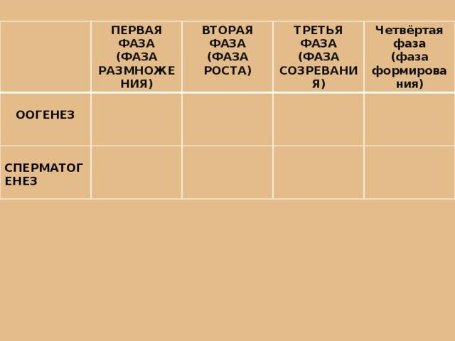 ПЕРВАЯ ФАЗА (ФАЗА РАЗМНОЖЕНИЯ) ВТОРАЯ ФАЗА ООГЕНЕЗ  (ФАЗА РОСТА) ТРЕТЬЯ ФАЗА СПЕРМАТОГЕНЕЗ (ФАЗА СОЗРЕВАНИЯ) Четвёртая фаза (фаза формирования)