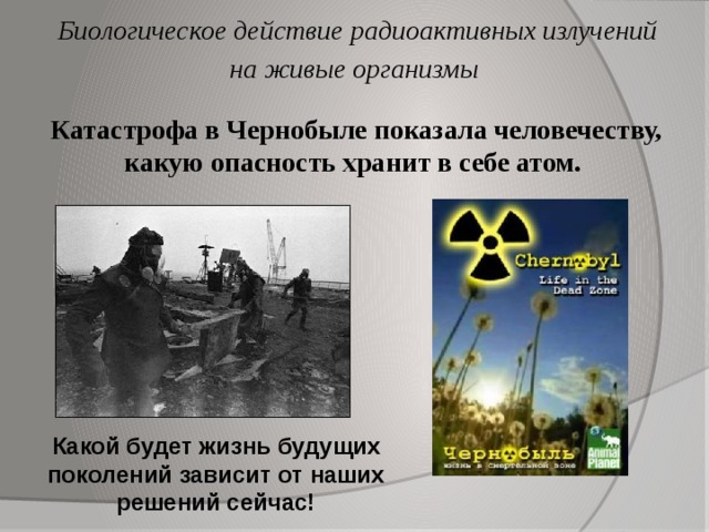 Биологическое действие радиоактивных излучений на живые организмы Катастрофа в Чернобыле показала человечеству, какую опасность хранит в себе атом. Какой будет жизнь будущих поколений зависит от наших решений сейчас!