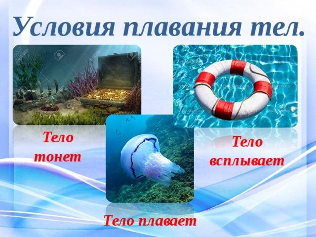 Условия плавания тел. Тело тонет Тело всплывает Тело плавает